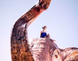 Fotograf Bodman Elefant