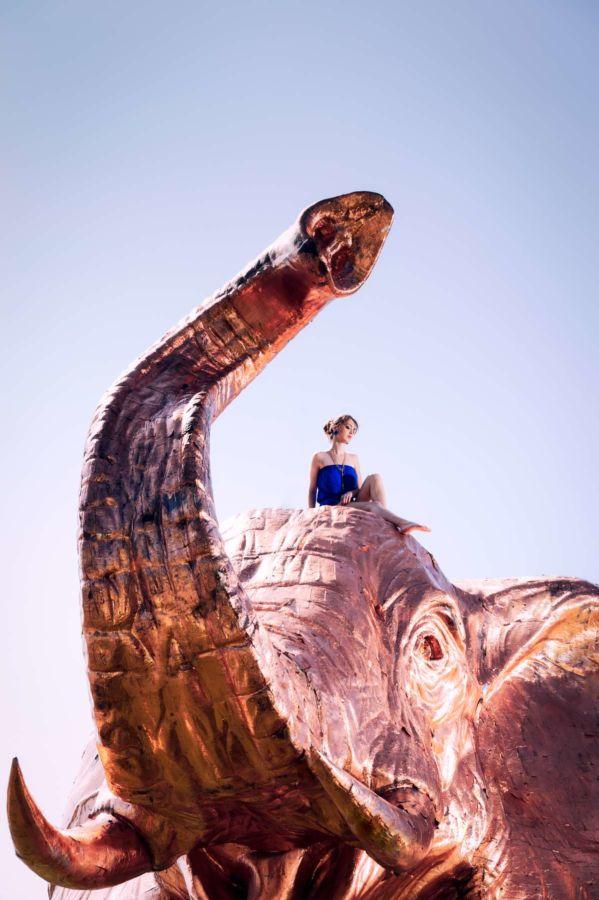 Elefant Fotoshooting in Bodman am Bodensee mit Kata