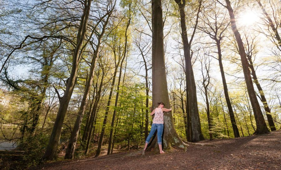 Naturverbundene junge Frau post für ein Fotoshooting in der Margarethenhöhe in inniger Umarmung mit einem Baum inmitten anderer Bäume im Stadtwald der Margarethenhöhe inmitten der Stadt Essen