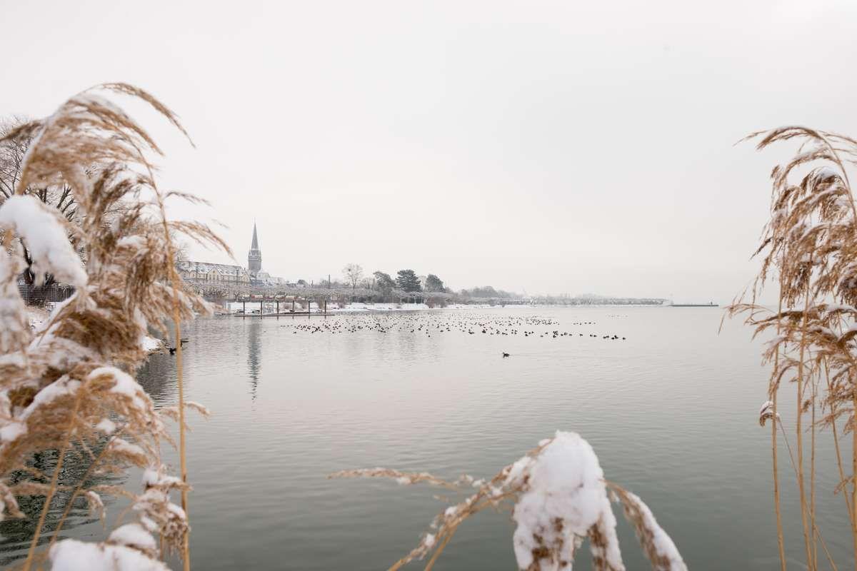 Stadt Radolfzell am Bodensee Schnee bedeckt im Winter