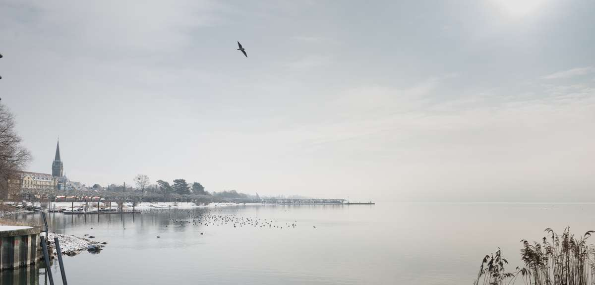 Radolfzell am Bodensee im Winter schnee bedeckt an einem herrlichem Morgenfrüh