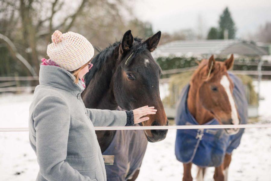 fotograf tiere pferde frau winter fotoshooting schnee