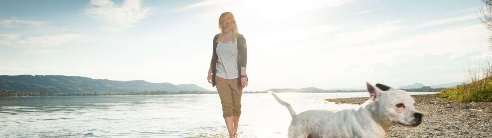 Tier-Fotoshooting  auf der Mettnau in Radolfzell am Bodensee