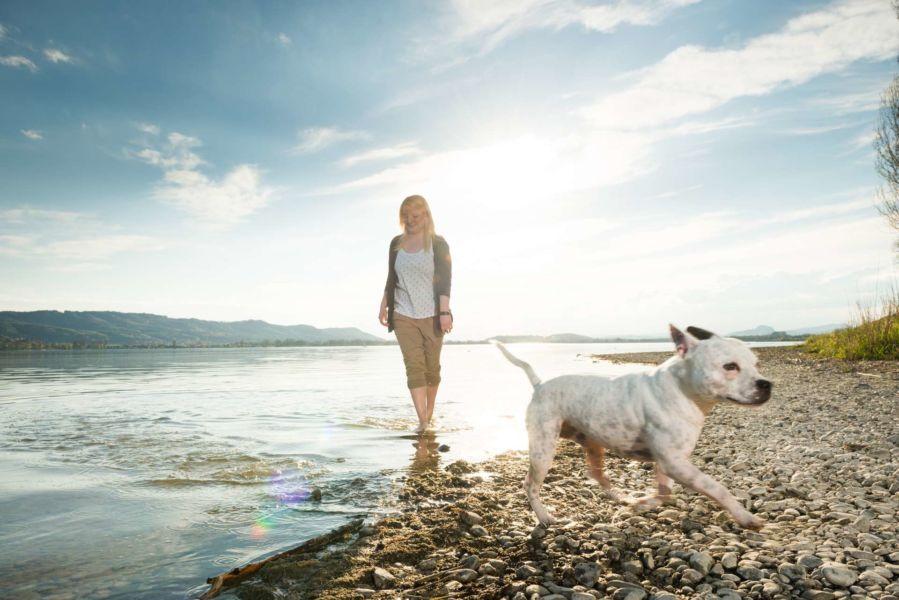 Junge hübsche Frau genießt die Freizeit mit ihrem Hund Rockie bei einem Fotoshooting mit Fotograf Rainer Rössler am wunderschönen Radolfzell am Bodensee