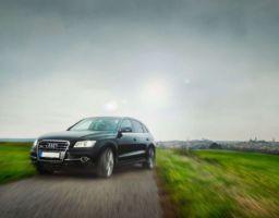 Audi Kollektion
