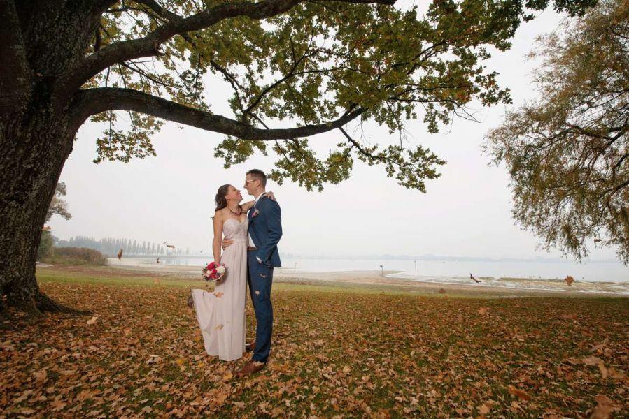 hochzeit moos strandbad bodensee brautpaar herbst blätter baum nebel fotoshooting fotograf