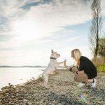 """Junge hübsche Frau gibt ihrem Hund Rocky ein """"High-Five"""" als Zeichen der Verbundenheit bei einem Fotoshooting mit Fotograf Rainer Rössler bei Radolfzell am Bodensee."""