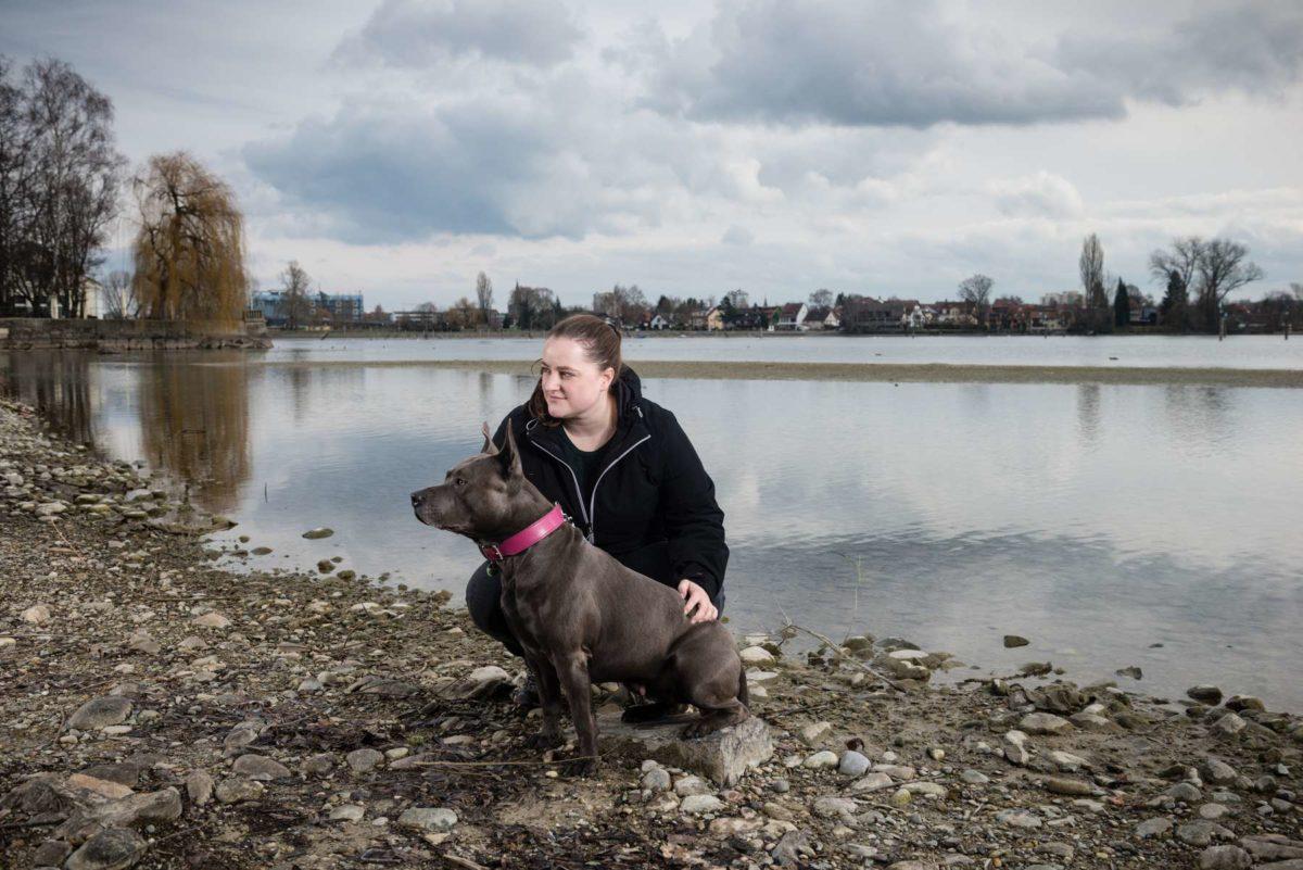 #25 Tierfotografie Hund Konstanz