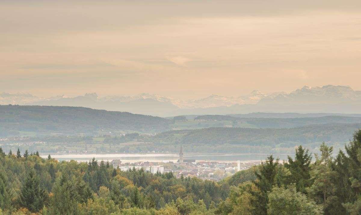 Herbstliche Impression von Radolfzell und den schneebedeckten Schweizer Alpen in der Ferne