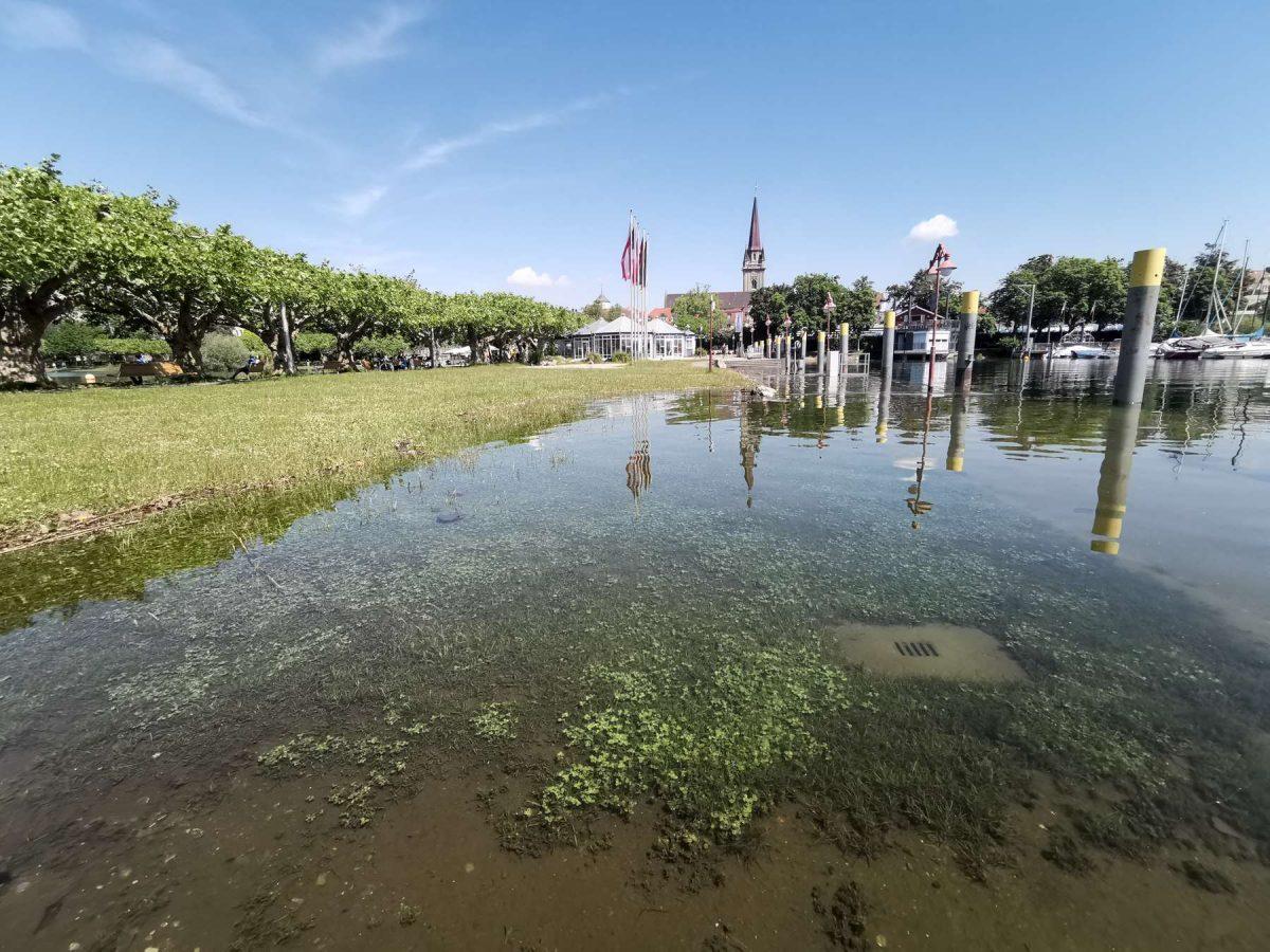 Hafen Hochwasser 2019