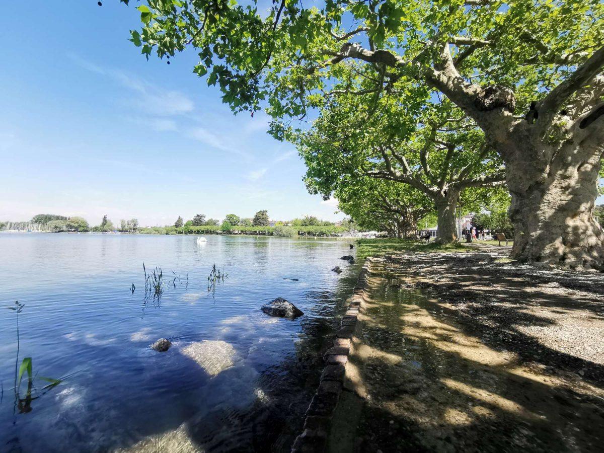 Mole Hochwasser 2019